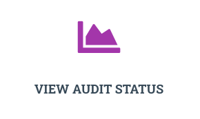 All-Season-Inspection-audit-status